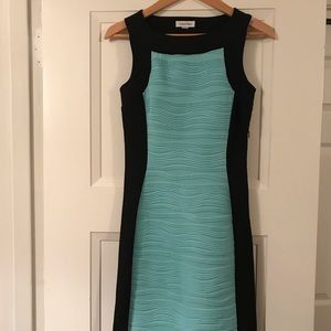 Back and teal dress